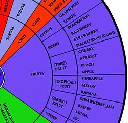wine_arom_wheel